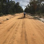 dirt-road-out-of-binnaway